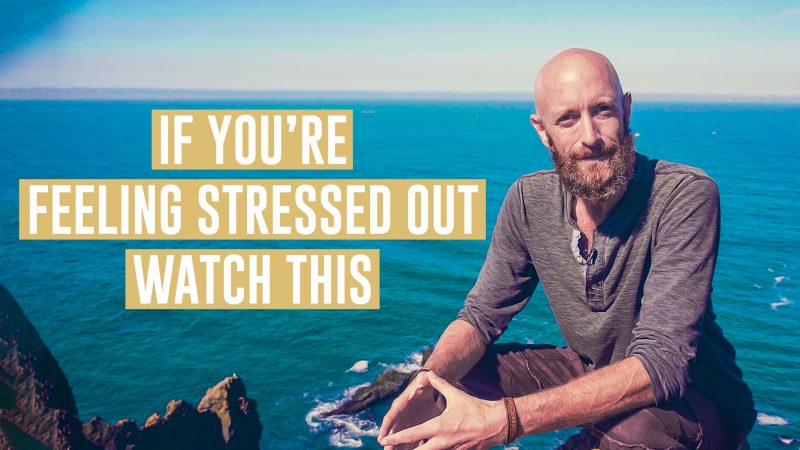 Mind Vitamins: Feeling Stressed Out? Watch This.
